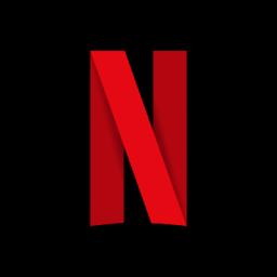 FlexiCam Netflix Video Downloader Crack (2)